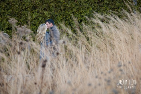 CLP_Angel_Clare_Lurie_grasses2