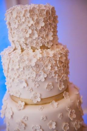 CLP_cake