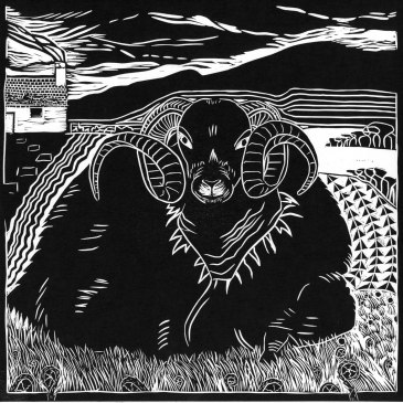 Image of artist and printmaker Carolyn Murphy's black and white linocut 'Scottish Sheep'