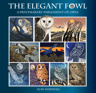 Image of the front cover of a book of printmakers' owls 'The Elegant Fowl' published by Mascot Media and featuring Carolyn Murphy's 'Barn Owl'