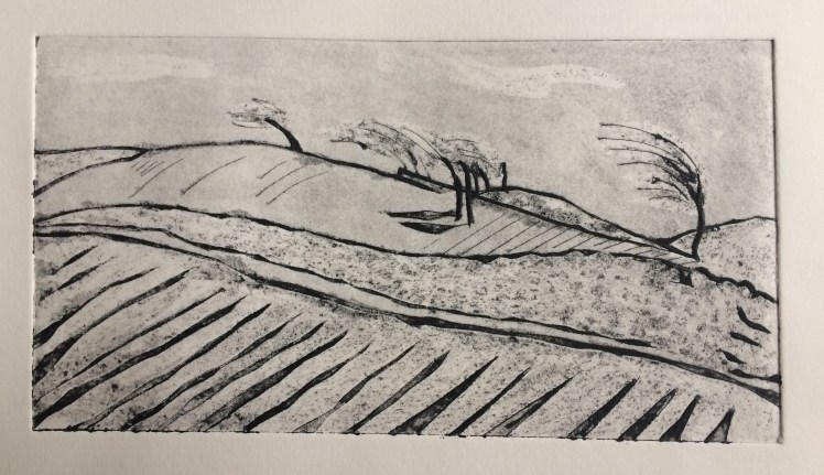 Image of a black and white collagraph 'Windswept' by printmaker Carolyn Murphy