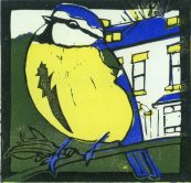 Image of a small linocut by artist Carolyn Murphy of a blue tit