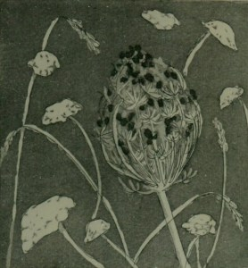 Image of etching 'Hot Verge' by Carolyn Murphy