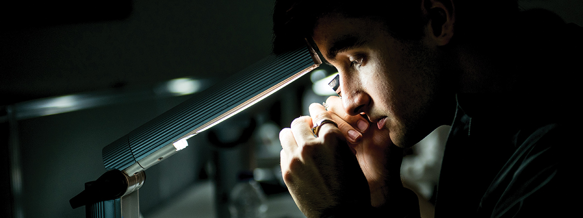 Gemmology and Jewellery Studies – BSc (Hons)