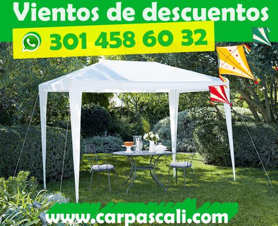 carpas-cali-3x3-1