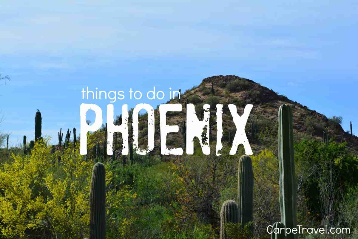 Fun Things to Do in Phoenix