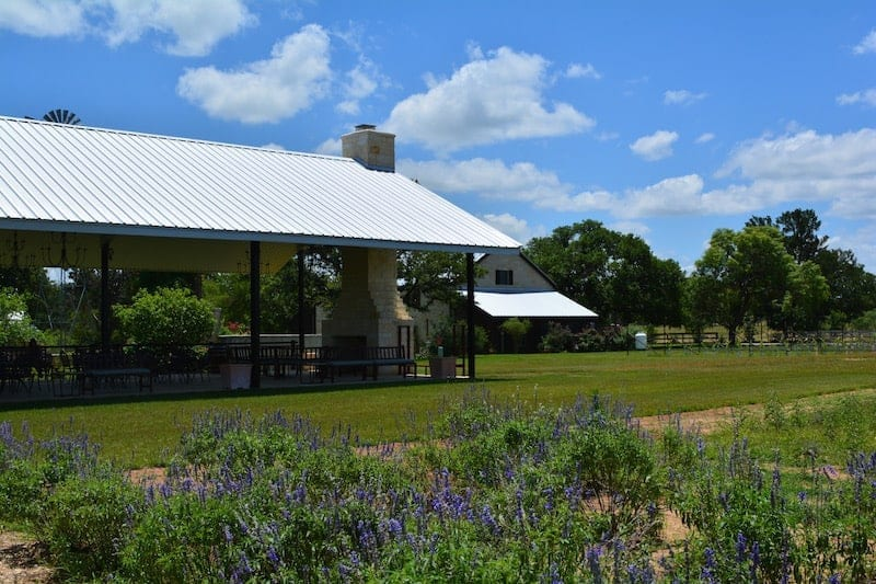 Becker Vineyards has been included in Carpe Travel round up the best wineries in Texas Hill Country to visit.