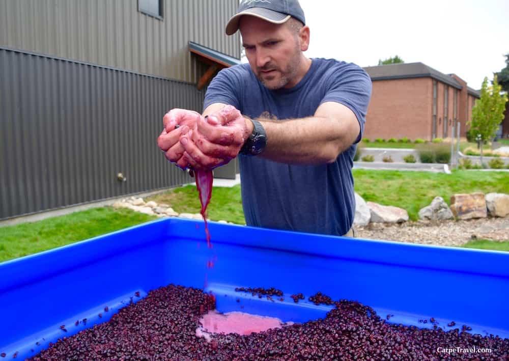 earl-sullivan-telaya-wine-idaho-winery