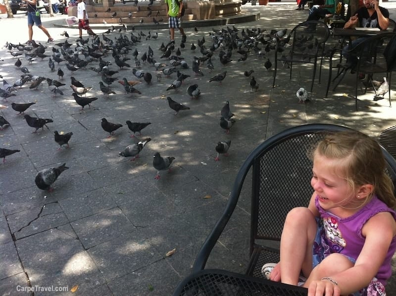 Things to do in San Juan with Kids: Visit Parque de las Palomas in Old San Juan and feed the pigeons