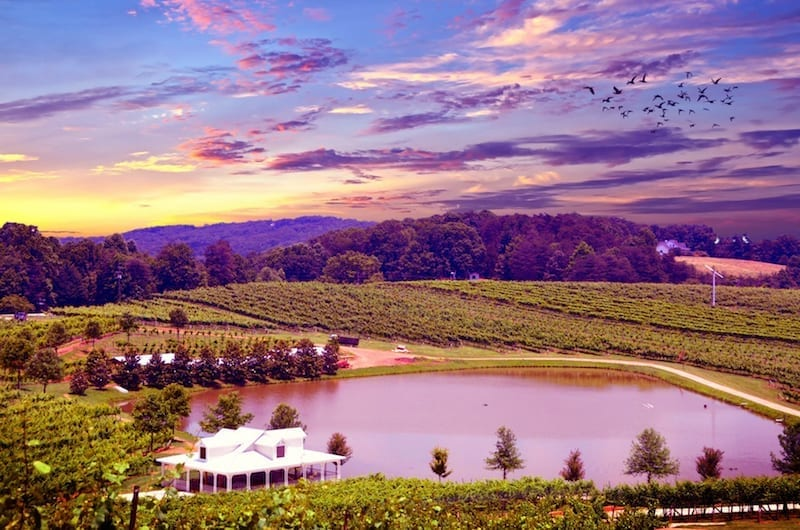 10 Best U.S. Cities for Wine Lovers - Sonoma. Wine is produced in all 50 of the United States, so you are probably sitting near a vineyard right now. If not, use this guide to plan a wine-flavored romantic vacation or girl's getaway in one of these top U.S. cities for wine lovers.