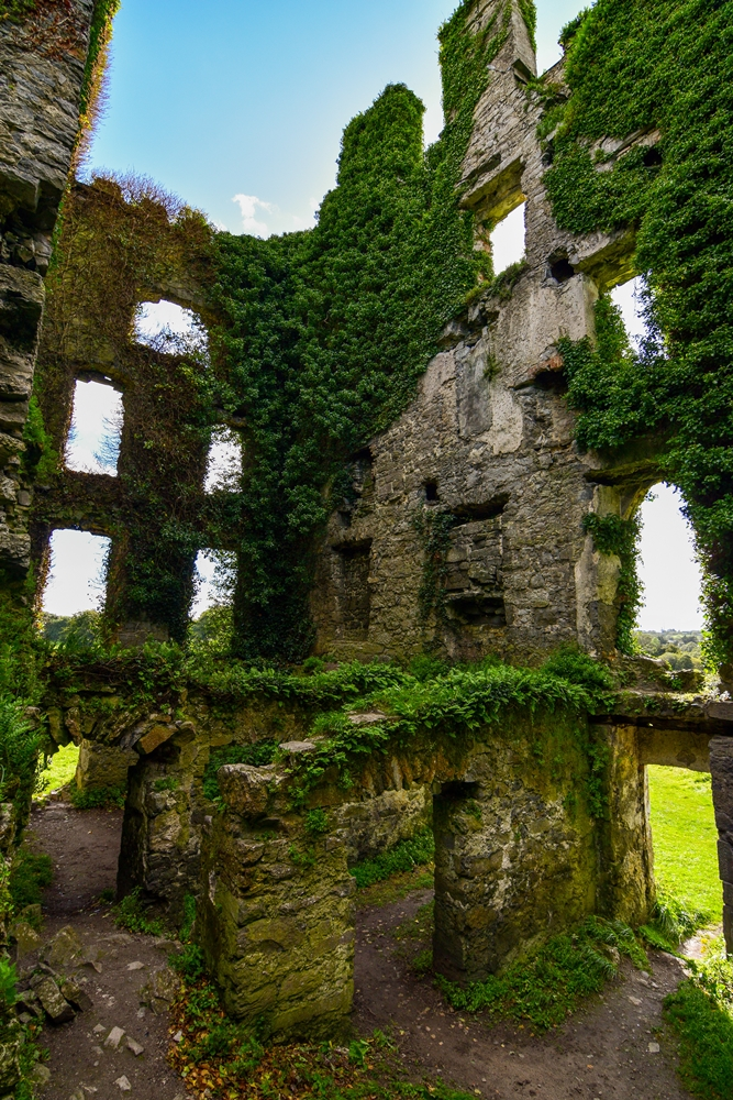 Menlo Castle, Galway