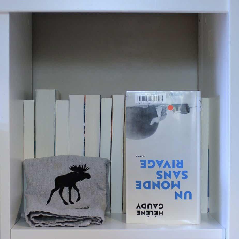 «Un monde sans rivage», Hélène Gaudy