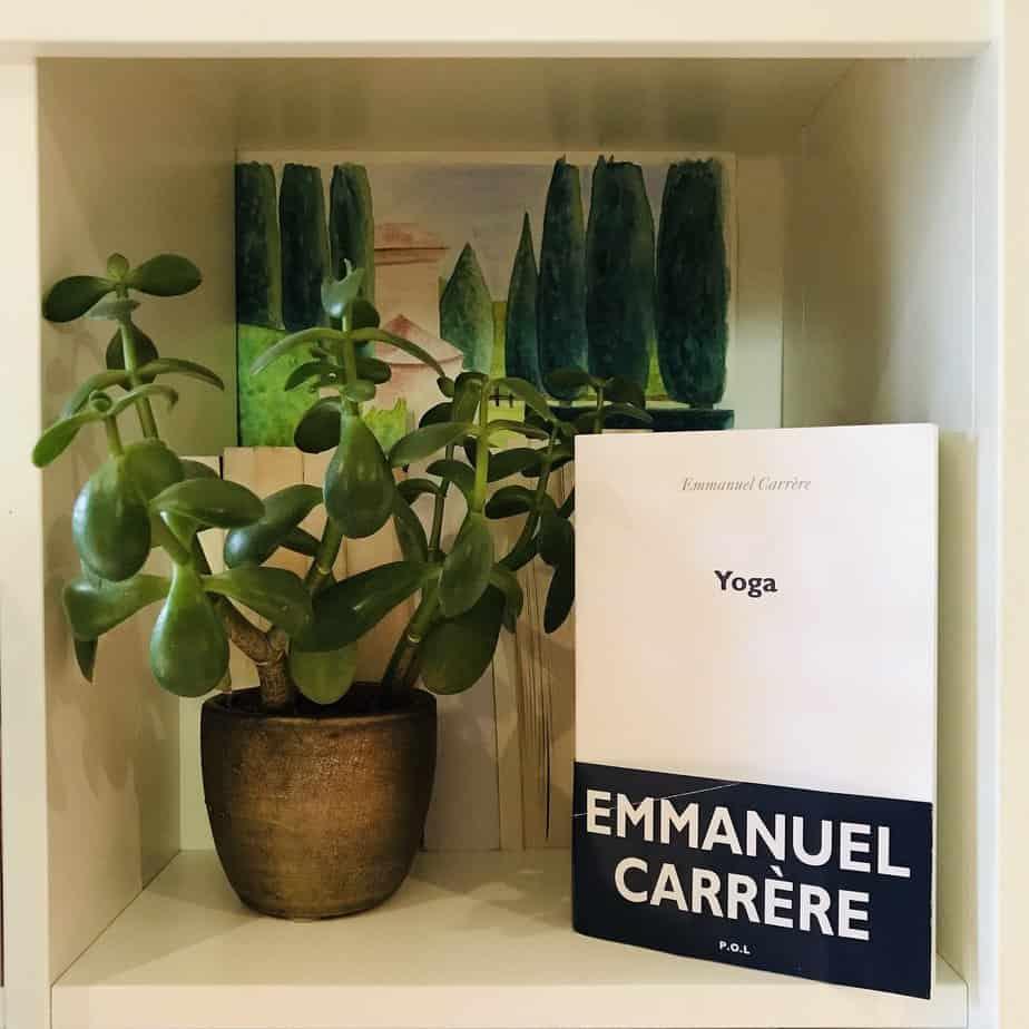Yoga, Emmanuel Carrère