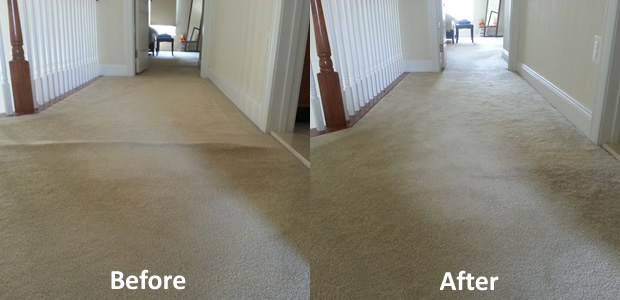 Carpet cleaning and Stretching