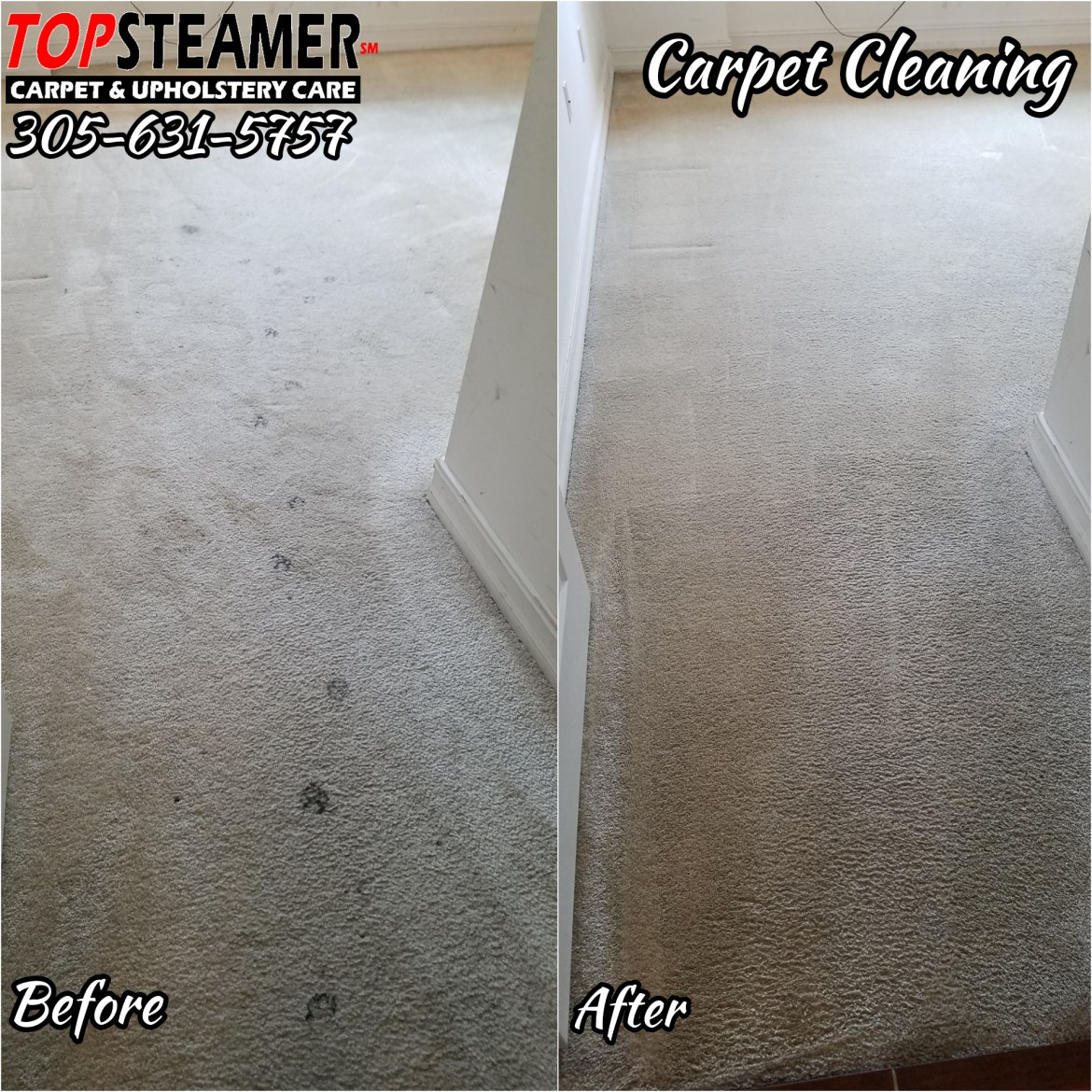 Carpet cleaner Miami