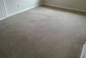 Apartment After Crystal Clean Carpets cleaning