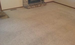 Carpet cleaning stains and heavy traffic