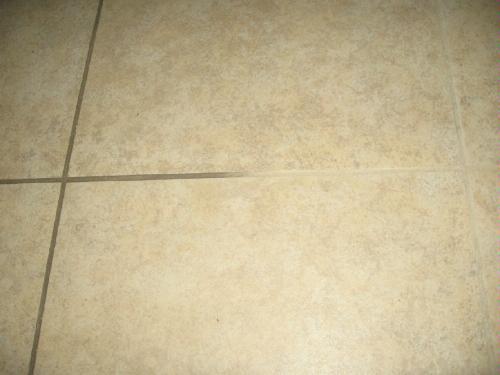 shark steam cleaner carpet floor