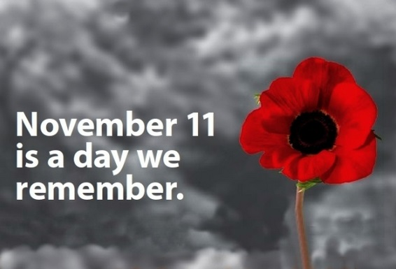 Nov 11
