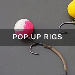 10 Best Carp Rigs & Setups (2019 with Diagrams)