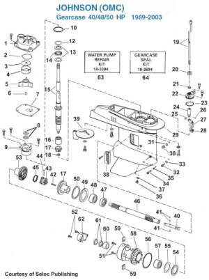 40 Hp Evinrude Parts Diagram | Automotive Parts Diagram Images