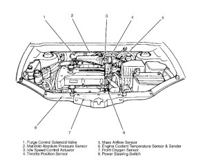 Hyundai Santa Fe Engine Diagram | Automotive Parts Diagram