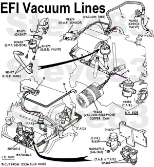1996 Ford Explorer Engine Diagram | Automotive Parts