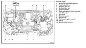 2000 Nissan Pathfinder Engine Diagram | Automotive Parts