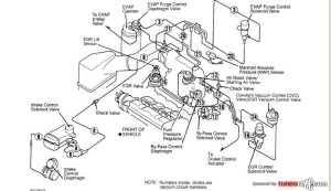 1995 Honda Accord Engine Diagram | Automotive Parts