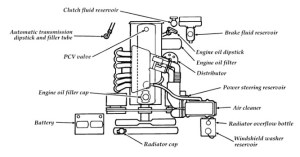 1986 Ford F150 Engine Diagram | Automotive Parts Diagram