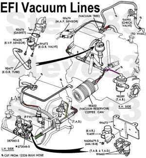 1999 Ford F150 Engine Diagram | Automotive Parts Diagram