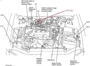 2003 Nissan Altima Engine Diagram | Automotive Parts