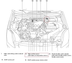 2008 Nissan Sentra Engine Diagram | Automotive Parts