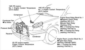 1998 Toyota Camry Engine Diagram | Automotive Parts