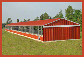 Steel Buildings triple wide Riding Arena