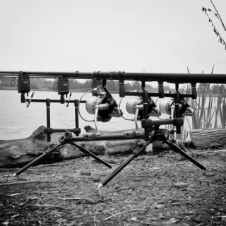 Top five rod rods in carp fishing