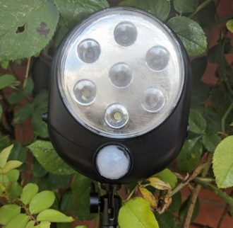 security light for carp fishing