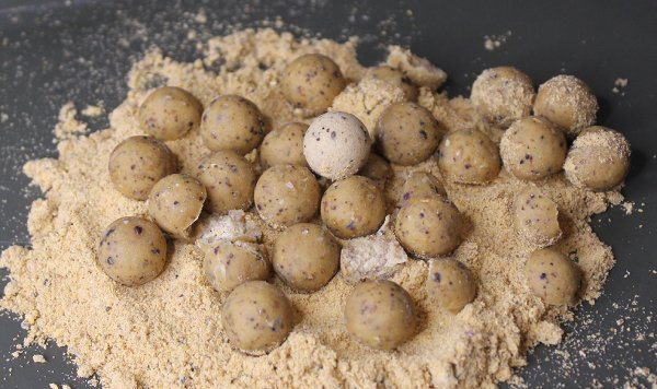 Casual Carper boilies over the Sweet Cream stick mix