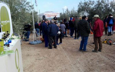 """AOVE Carrasqueño patrocina el I concurso de poda del olivo """"Ciudad de Alcaudete"""""""
