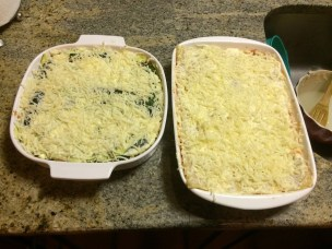 Lasagna's pre-oven