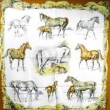 monnaies-et-symboles-des-parisii-hermes-silk-scarf-17