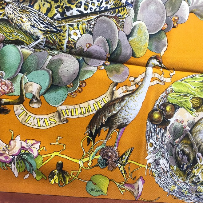 Faune et Flore Du Texas - Texas Wildlife RARE HERMES Silk Scarf (4)