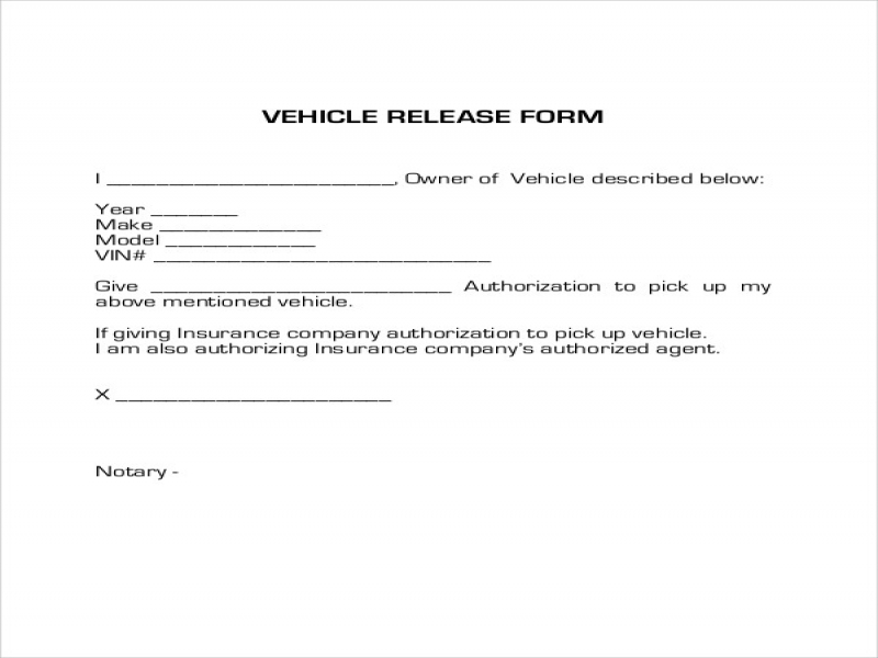 Car Release Form Sample Vehicle Release Form 9 Examples In Word Pdf