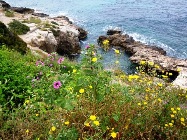 Ibiza trail running fotos