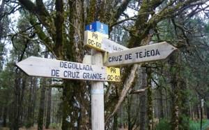 Transgrancanaria 2014: Garañón, cruce de caminos para entrenar.