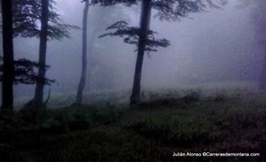 ehunmilak 2014 fotos g2h amanece en Lizarrausti