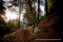 trail madrid 2014 fotos carrerasdemontana.com (29)