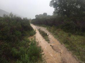 bandoleros-2017-llanos-inundados
