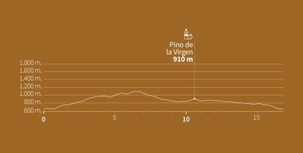 reventon trail perfil sprint