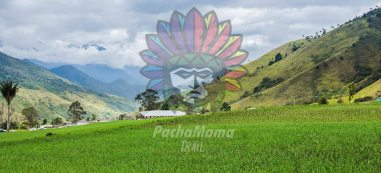 trail running colombia pachamama trail (1)